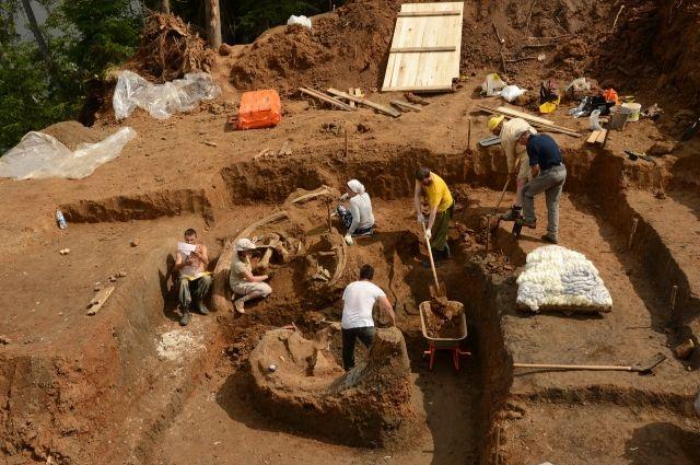 В этом году раскопки проходили с 21 до 31 июля.