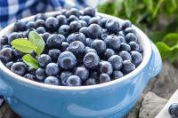 Диетолог назвала ягоду, которая борется с морщинами и поднимает иммунитет