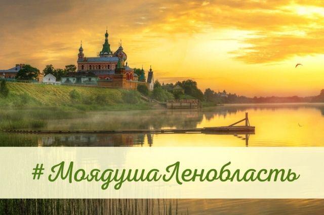 В области стартовал конкурс #МоядушаЛенобласть на лучшее поздравление – заявки на участие принимаются до 31 августа.