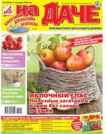 Яблочный спас. Полезные заготовки: варим без сахара и сушим