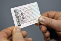 Под Оренбургом обнаружили свалку просроченных водительских удостоверений.