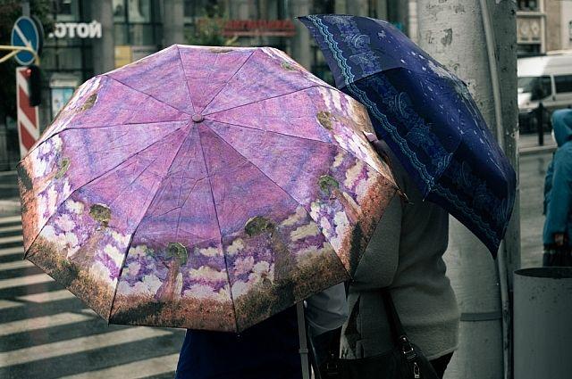 МЧС: в Тюмень 12 августа придут дожди и сильный ветер