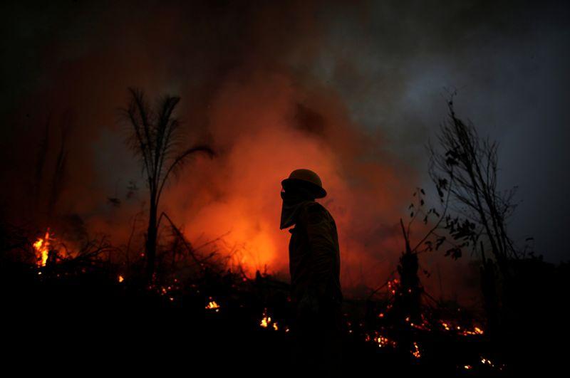 Пожарная бригада Бразильского института окружающей среды и возобновляемых природных ресурсов (IBAMA) пытается контролировать пожар в джунглях Амазонки в Апуи.