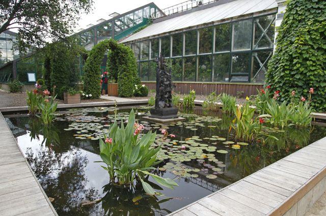Квадратный бассейн с кувшинками и Зелёная комната для отдыха.