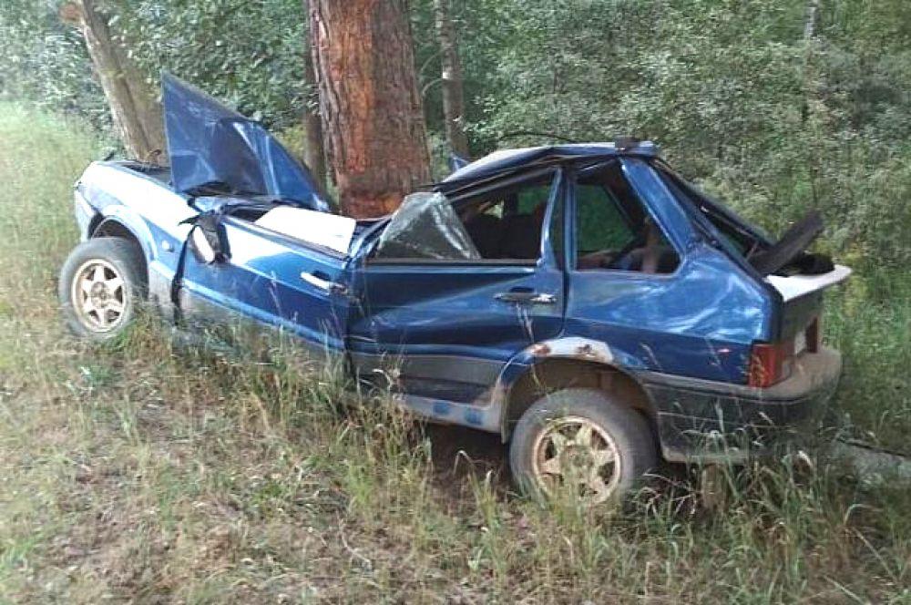 В результате этого столкновения автомобиля с деревом подросток, водитель ВАЗ, погиб.