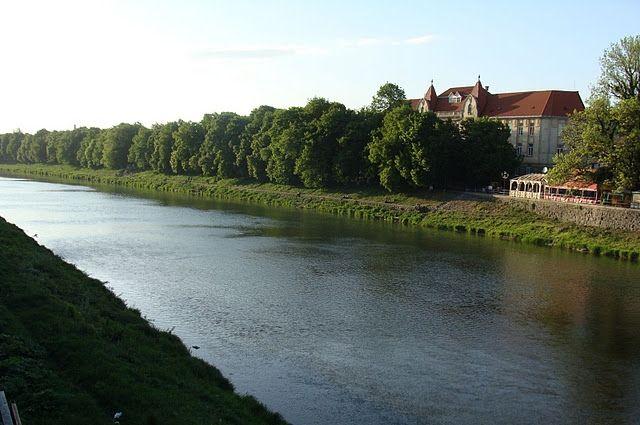 Была река – стало болото. Почему мелеют и засоряются водные артерии страны
