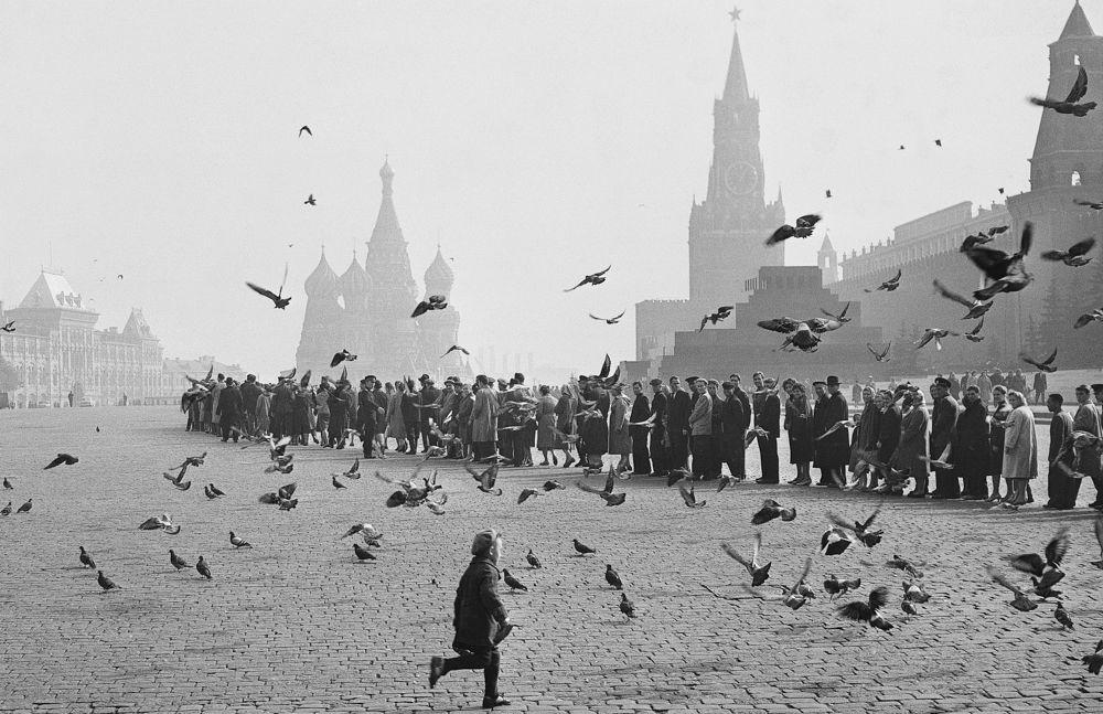 Голуби на Красной площади. К Ленину. 1950-е