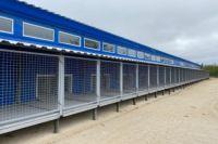 В Пуровском районе откроется приют для бездомных животных