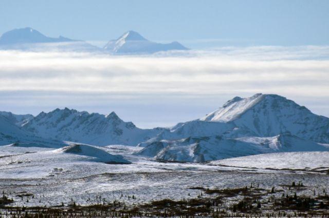Администрация Трампа разрешила добычу нефти в заповеднике на Аляске