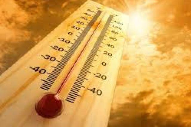 Погода на 19 августа: сухо и жарко, в западных областях ожидаются дожди