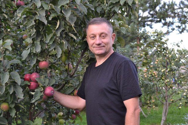 Все свое свободное время Виталий Брыкин посвящает яблокам.