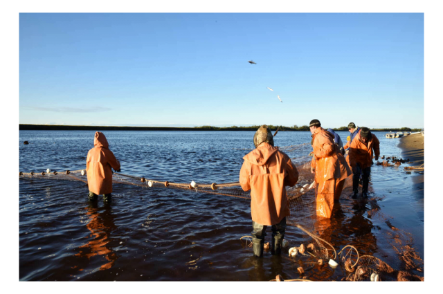 Ямальцы могут подать заявку на традиционное рыболовство до 1 сентября