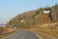 На трассе Тюмень – Ханты-Мансийск иномарка насмерть сбила лося
