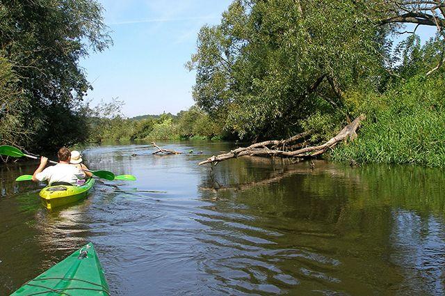 Отдых на воде – одна из самых замечательных возможностей экологического туризма.
