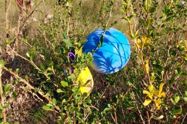 Специалисты оренбургских заповедников запустили флешмоб против воздушных шариков.