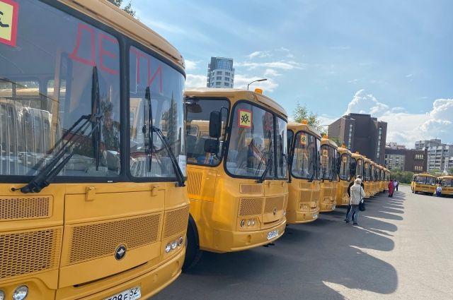 38 автобусов марки «ПАЗ» куплены за счет краевого бюджета.