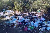 Прокуратура потребовала от главы Южного округа Оренбурга убрать стихийную свалку.