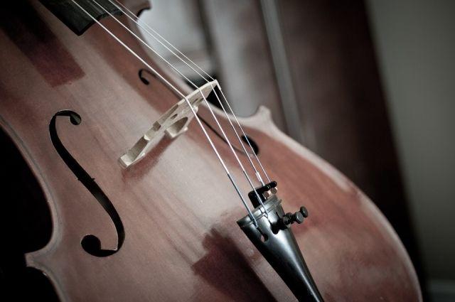 Для юных ханымейцев купили виолончели