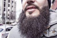 Борода бороде рознь. За что бородачи любят бороду