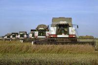 На полях Тюменского района продолжается уборка зерновых