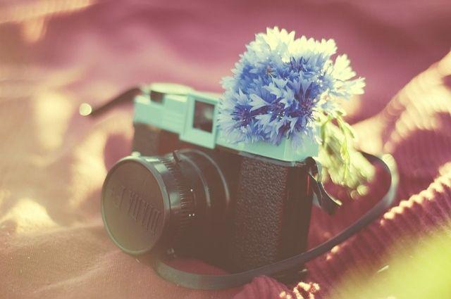 Остался один день, чтобы принять участие в фотоконкурсе World Eco Photo