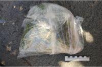Житель Новотроицка беззаботно гулял по городу, нося в кармане полкило марихуаны.