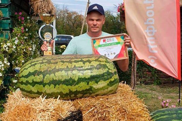 Самый большой арбуз в России весом почти 58 кг вырастил фермер из Соль-Илецка Петр Есипчугов.