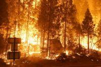 В Калифорнии ввели чрезвычайную ситуацию из-за лесных пожаров.