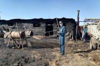 В Оренбуржье малолетние дети со спичками спалили соседский сарай, сено и скотину.