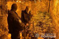 На Житомирщине полиция изъяла у наркодиллера три килограмма марихуаны