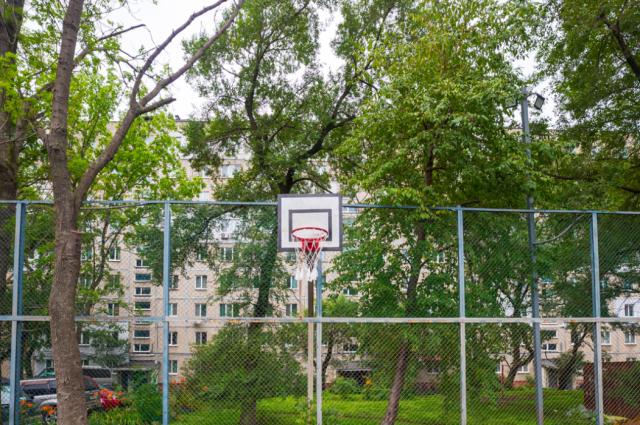 В лесополосе в районе МЖК установят спортивные снаряды.