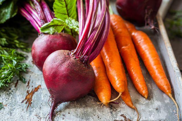 Центр по переработке и хранению овощей появится в Башкирии
