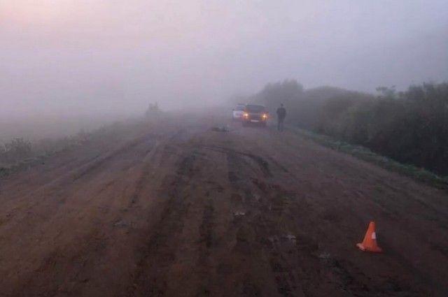 Подросток за рулем «Лады Гранта» сбил насмерть девушку на трассе в Башкирии