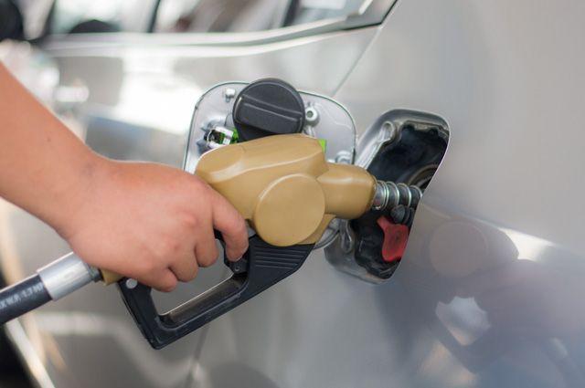 Исследование: водители в РФ стали чаще отказываться от бензина Аи-95
