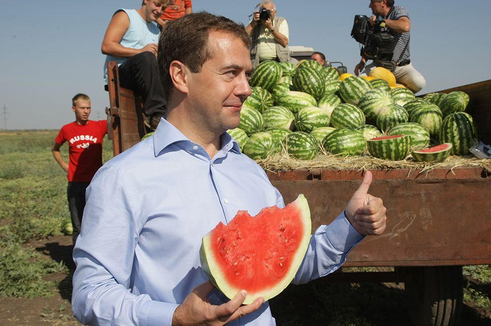 Дмитрий Медведев во время посещения колхозно-фермерского хозяйства «Грачиное», которое занимается выращиванием зерновых и бахчевых культур. 2010 год.