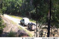 На первых кадрах машина заезжает в лес с мусором.