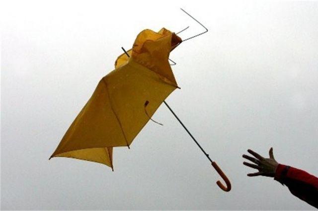 Порывы ветра до 22 м/с ожидаются в Уфе