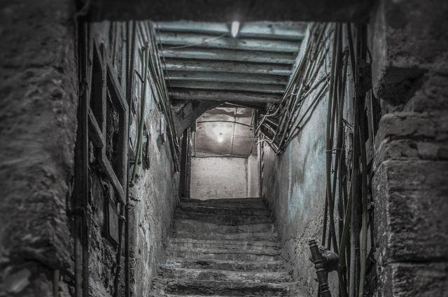 Спасатели помогли 83-летней бабушке из Заводоуковска, упавшей в подполье