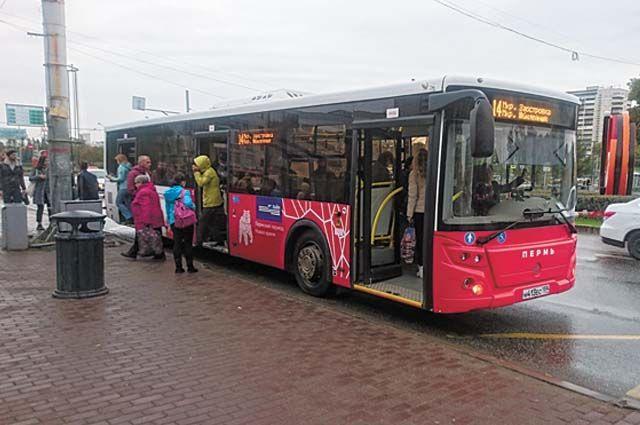 Половина автобусного парка предприятия работает на сжатом природном газе.