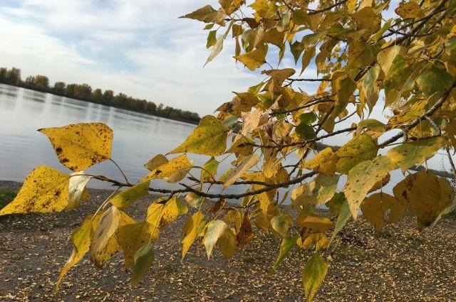 После 26 сентября в Красноярске ожидается похолодание до 5–7 градусов.