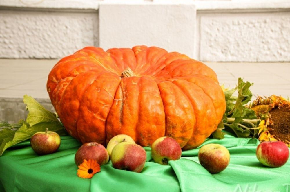 Ярким пятном праздника стала гигантская натуральная тыква, выращенная Татьяной Бархатовой из п. Вельмо. Эта тыква символизировала урожай.