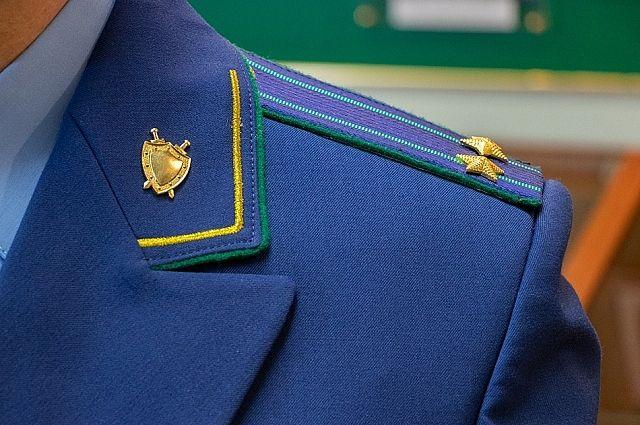 Прокуратура нашла нарушения трудовых прав кораблинских школьников