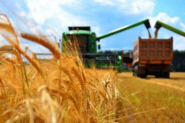 В Украине изменят ставки НДС по поставке сельскохозяйственных продуктов