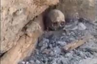 Во время разработки котлована строительных нашли череп и кости человека.
