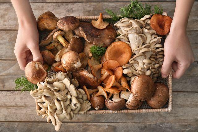 Нужно ли мыть грибы перед жаркой и засолкой? Советы от шеф-поваров