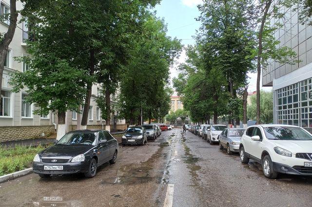 Липы в центре Уфы, вопреки заявлению мэрии, вырубают без согласия граждан