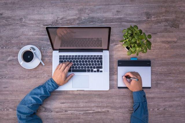 Чаще всего ямальцы выбирают обучение на системного администратора, веб-дизайнера и программиста
