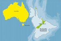 Ученые рассказали, кто обитал на затонувшем континенте Зеландия