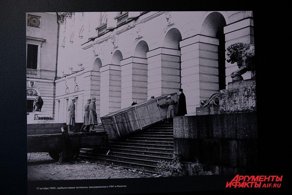 Выставка «Спасибо, Пермь!».
