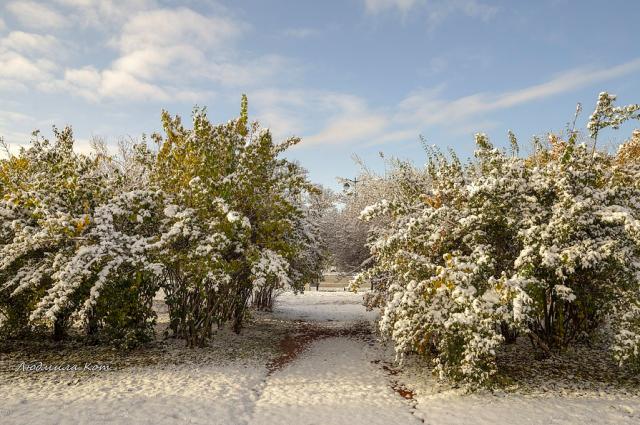 По данным специалистов Гидрометцентра России, снег будет идти в тёмное время суток